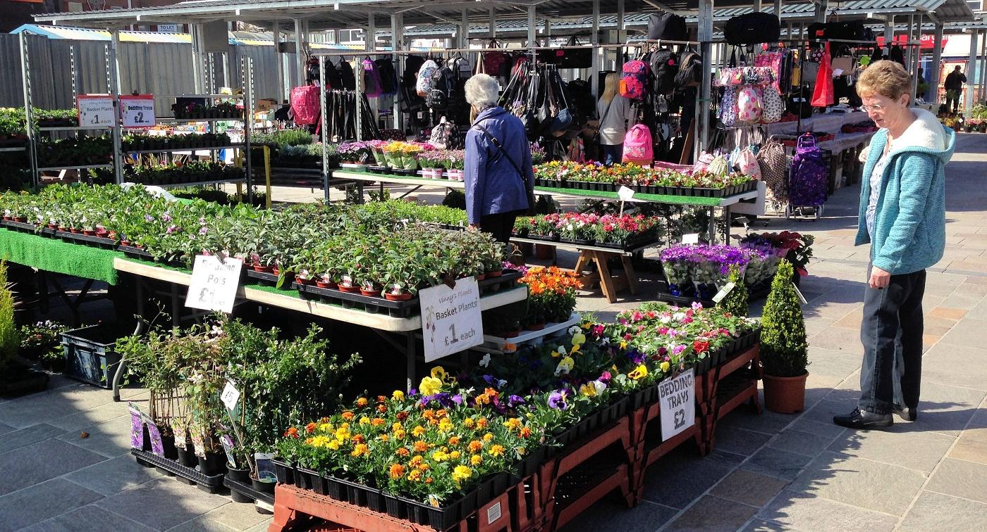 Ashton Outdoor Market